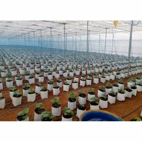 White Greenhouse Grow Bag