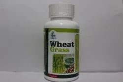 None Wheat Grass Capsules, Packaging Type: Bottle, Herbasia