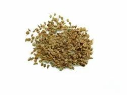 Natural DDRS Ajmoda / Ajmod / Celery Seed, Model Number: Ddrs1605