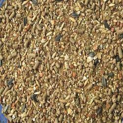 Breeding Layer Poultry Feed