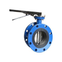 SS 304 Wafer Type Butterfly Valve