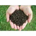 Granular Bio Fertilizer, Packaging Size: 25 Kg, Packaging Type: Plastic Sack Bag