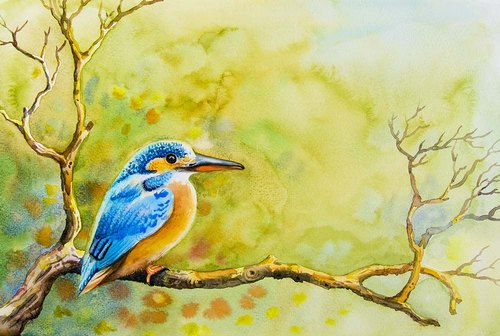 Nature Canvas Wildlife Painting Art