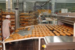 Automatic Arabic Bread Making Plant