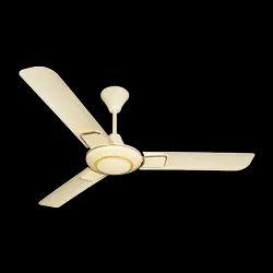 Crompton Dorado Ceiling Fan