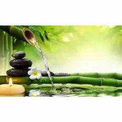 Ayurvedic and Herbal PCD Pharma Franchise in Ernakulam