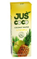 Coconut Milk With Pineapple Flavor For Refreshing Drink, Packaging Type: Tetra pack