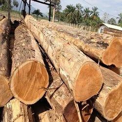 Round teak logs