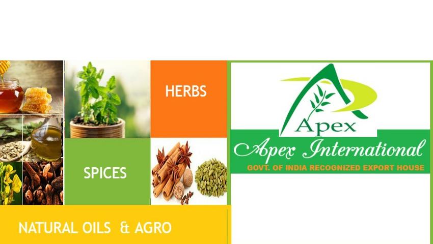 Spray Dried Fruit Powder - Coconut Water Powder 100% Export Oriented