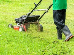 Grass Cutting Machine