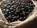 Mucuna Prurien Seed
