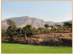 Landscape Photography Service