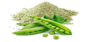 Pea Protein Isolate Powder, Packaging Size: 20 Kg, Packaging Type: Pp Bag