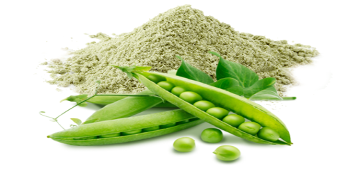 Image result for Pea Protein