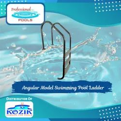 Angular Model Swimming Pool Ladder