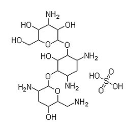 Tobramycin Assay