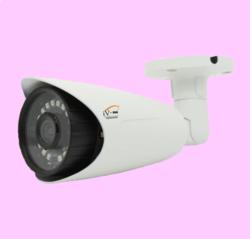 IP Outdoor CCTV Camera - 1.3mp