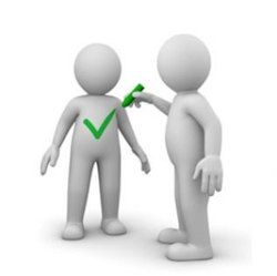 Organizational Assessment Audits Services