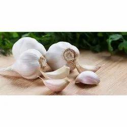 Fresh Crop Garlic