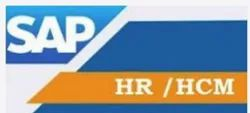 SAP HR And HCM Support Service