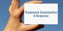 Trademark Reply To Examination Services
