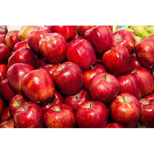 Fresh Red Delicious Apple Savadisht Lal Seb Royal Gala Apple