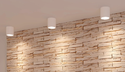 10,20,30,50W Surface mount COB LED down light