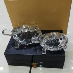 Glass Tortoise