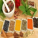 Ayurvedic Herbal Product Testing Services