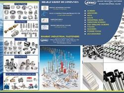 All Type of Fittings & Flanges