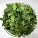 Freeze Dried Neem