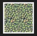 Orid Seeds
