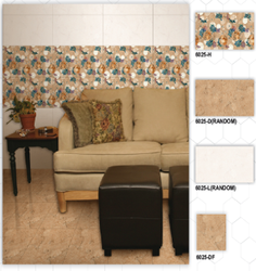 6025 (H, D, L, DF) Hexa Ceramic Digital Wall Tiles