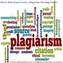 Plagiarism Check Consultancy Service Provider
