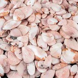 Natural Scolecite Cabochon
