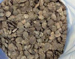 Red Sandalwood Seeds