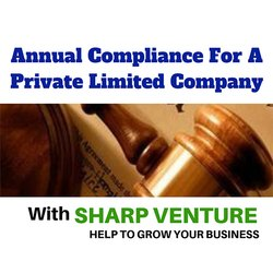 PVT LTD Annual Compliance Service