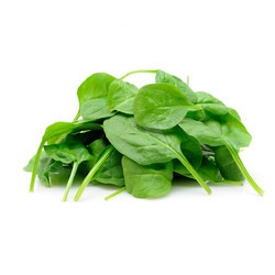 Palak Seed (Indian Spinach) - All Green