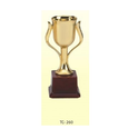 Kebica Awards Trophy