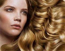 Shine N Steel Hair Spa Service
