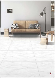 Polished Porcelain Floor & Wall Tiles 800x800