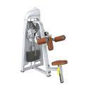 Lateral Raise Machine