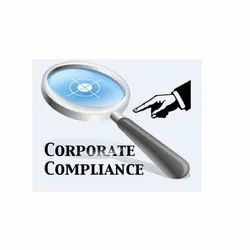Consulting Firm Corporate Compliance Services
