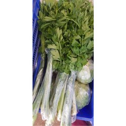 A Grade Fresh Green Celery, Packaging Size: 10-15 Kg, Packaging Type: Plastic Bag