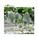 PP Spunbond Nonwoven Agriculture Fruit Covering Fabric