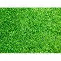 For Garden Natural Lawn Grass