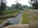 Canal Survey