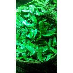 Broad Beans Wholesale Price For Field Bean In India
