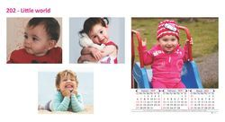 Four Sheet Wall Calendar 202