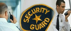 Morning Security Guard Services For Office & Agency, No of Persons Required: Deepend On Service